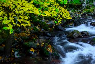 マッケンジーリバーの紅葉と滝の写真素材 [FYI02677003]
