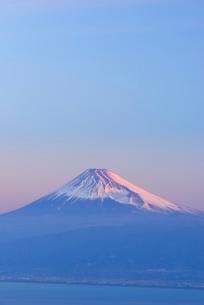 静岡県 富士山 だるま山高原レストハウスよりの写真素材 [FYI02677022]