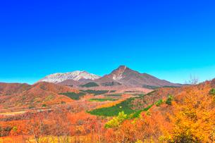 鬼女台より望む紅葉の大山と烏ヶ山の写真素材 [FYI02677079]