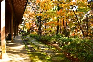 松雲山荘の紅葉の写真素材 [FYI02677124]