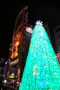 道頓堀のクリスマスツリーの写真素材 [FYI02677127]