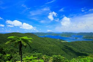 奄美大島 油井岳展望台より望む大島海峡と加計呂麻島の写真素材 [FYI02677146]