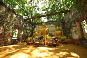 ワット・サン・カラ・タイの写真素材 [FYI02677172]