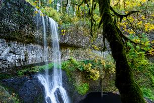 シルバーフォールズ州立公園内のとある滝の写真素材 [FYI02677226]