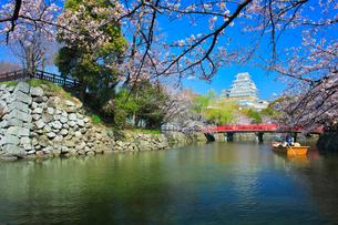 姫路城 天守閣と桜に赤い城見橋と観光学習船の写真素材 [FYI02677230]