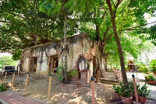 ワット・サン・カラ・タイの写真素材 [FYI02677288]