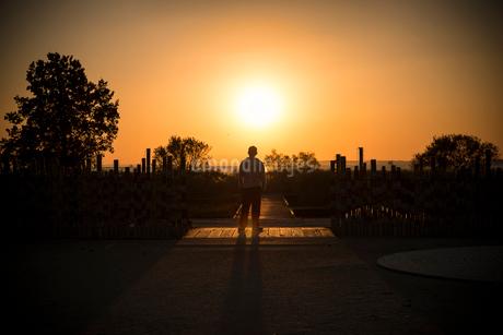霞ケ浦総合公園の朝日と男性の写真素材 [FYI02677337]