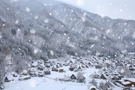 荻町城跡展望台から望む雪景色の白川郷の写真素材 [FYI02677353]