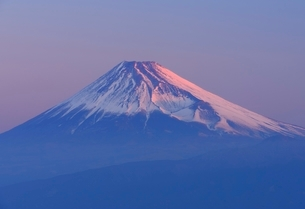 静岡県 富士山 だるま山高原レストハウスよりの写真素材 [FYI02677379]