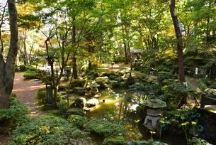 松雲山荘日本庭園の印象の写真素材 [FYI02677381]
