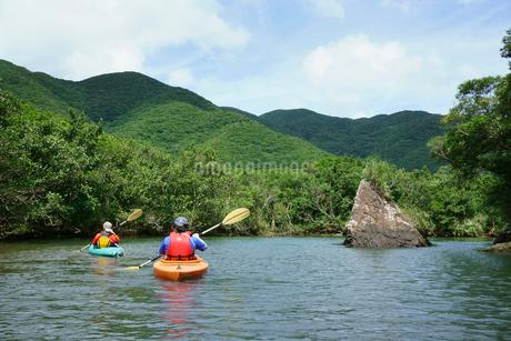 奄美大島 マングローブ原生林とカヌーの写真素材 [FYI02677586]