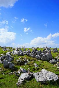 四国カルストの五段高原の写真素材 [FYI02677607]