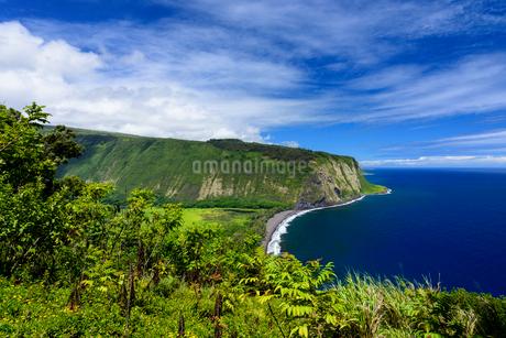 ハワイ ハワイ島 ワイピオ渓谷の写真素材 [FYI02677655]