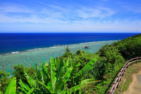 奄美大島 大浜海浜公園より望む東シナ海の写真素材 [FYI02677748]