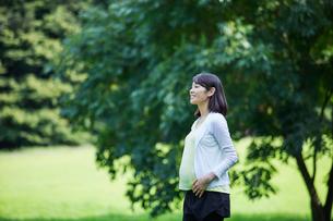 緑の中を歩く女性の写真素材 [FYI02677777]