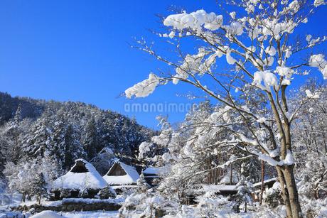 雪景色の飛騨の里の写真素材 [FYI02677787]