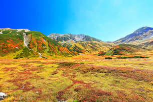 秋の立山の写真素材 [FYI02677883]