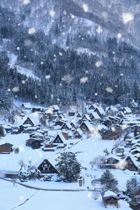 荻町城跡展望台から望む雪景色の白川郷の写真素材 [FYI02677896]