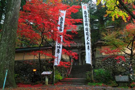 両界山横蔵寺の紅葉の写真素材 [FYI02677913]