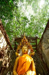 ワット・サン・カラ・タイの写真素材 [FYI02677948]