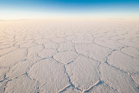 乾季のウユニ塩湖の亀甲模様の写真素材 [FYI02677997]