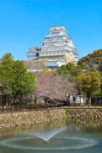 姫路城 城見橋より天守閣と桜に噴水の写真素材 [FYI02678101]