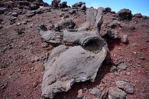 富士山頂にある奇形溶岩の写真素材 [FYI02678114]