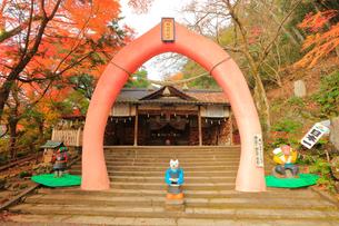 桃太郎神社の写真素材 [FYI02678183]