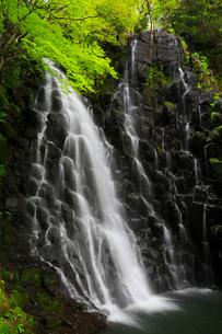 筥滝と新緑の写真素材 [FYI02678210]