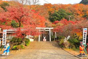 桃太郎神社の写真素材 [FYI02678248]