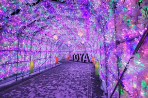 洞爺湖温泉 イルミネーショントンネルの写真素材 [FYI02678263]