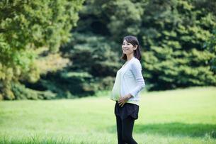 緑の中を歩く女性の写真素材 [FYI02678299]