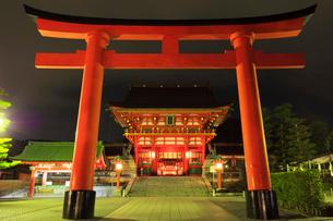 伏見稲荷大社・鳥居に楼門ライトアップ夜景の写真素材 [FYI02678309]