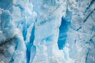 ペリトモレノ氷河の氷壁の写真素材 [FYI02678313]
