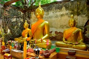 ワット・サン・カラ・タイの写真素材 [FYI02678341]