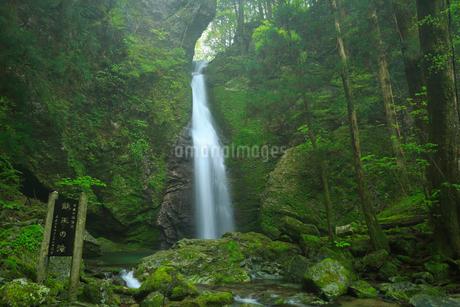 龍王の滝の写真素材 [FYI02678344]
