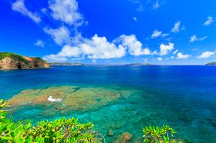 小笠原諸島母島 鮫ヶ崎より望む島々の写真素材 [FYI02678424]