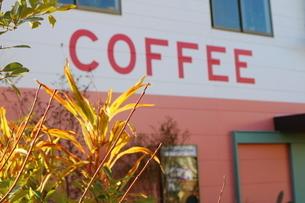 公園のコーヒーショップの写真素材 [FYI02678496]