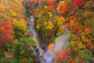 子安峡の大噴湯と紅葉の写真素材 [FYI02678550]