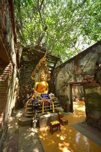 ワット・サン・カラ・タイの写真素材 [FYI02678599]
