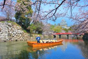 姫路城 天守閣と桜に赤い城見橋と観光学習船の写真素材 [FYI02678613]