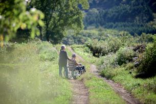 車椅子を押すシニア夫婦の写真素材 [FYI02678650]