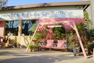 フラワーショップの前にあるピンクのブランコの写真素材 [FYI02678690]