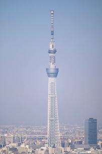 豊洲から見た東京スカイツリー方面の写真素材 [FYI02678694]