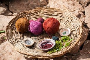 天然染料で染色するケチュア族の織物の写真素材 [FYI02678818]