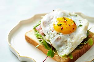 エッグハムトーストの写真素材 [FYI02678821]