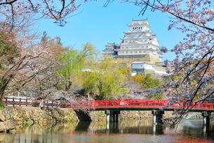 姫路城 天守閣と桜に城見橋の写真素材 [FYI02678866]