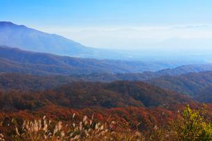 秋の蒜山高原・鬼女台より望む紅葉の山並みの写真素材 [FYI02678888]
