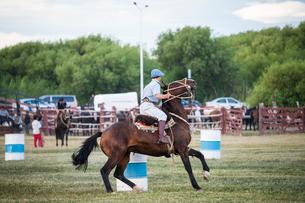 パタゴニアの牧童ガウチョと騎馬祭の写真素材 [FYI02678903]
