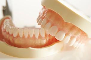 歯型の写真素材 [FYI02678927]